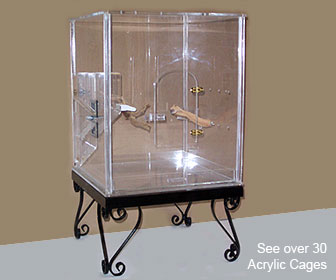 Perch Factory Acrylic Bird Cage Plexiglass Bird Cage