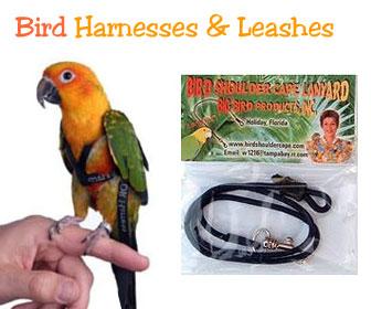 Perch Factory Parrot Harness Bird Leash Tether