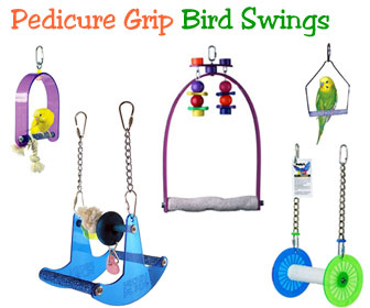 Bird Cage Swings