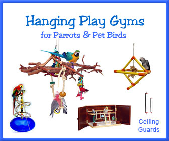 Hanging Bird Play Stand Gyms & Perches for Parrots