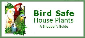 Perch Factory Parrot Supplies Parrot Stand Bird Perches